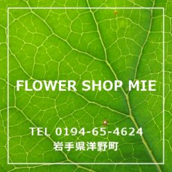 Flower shop mie gallery